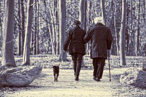 高齢者の未来